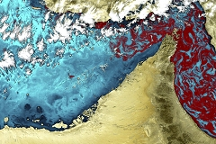 Red Tide in Persian Gulf - ESA Image of the Day